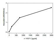 DP3507 - VEGF-C / Flt4-L