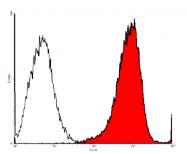 DP3517 - CD105 / Endoglin