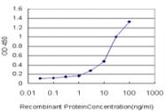 H00000052-M01 - ACP1 / LMW-PTPase