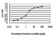 H00000091-M01 - Activin receptor type 1B / ACVR1B