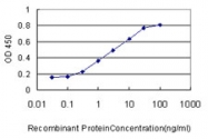 H00000097-M01 - Acylphosphatase 1 (ACYP1)