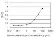 H00000111-M01 - Adenylate cyclase type 5