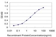 H00000130-M01 - Alcohol dehydrogenase 6 / ADH6