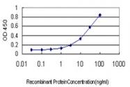 H00000148-M01 - Alpha-1A adrenergic receptor / ADRA1A