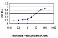 H00000490-M01 - ATP2B1 / PMCA1