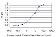H00001069-M01 - Centrin-2