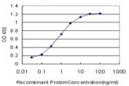 H00001129-M01 - Muscarinic acetylcholine receptor M2