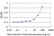H00001738-M05 - Dihydrolipoyl dehydrogenase