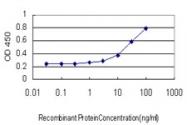 H00001991-M02 - Neutrophil elastase