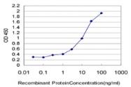 H00001991-M07 - Neutrophil elastase