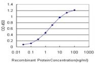 H00002035-M01 - EPB41 / Protein 4.1