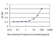 H00002052-M01 - Epoxide hydrolase 1 / EPHX1