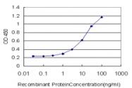 H00002100-M01 - Estrogen receptor beta