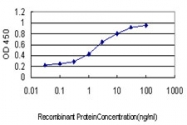H00002161-M01 - Coagulation factor XII (F12)