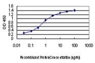 H00002263-M01 - CD332 / FGFR-2