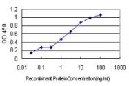 H00002643-M01 - GTP cyclohydrolase 1 (GCH1)