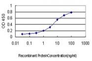 H00002643-M02 - GTP cyclohydrolase 1 (GCH1)