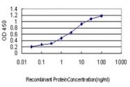 H00002643-M03 - GTP cyclohydrolase 1 (GCH1)