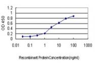 H00002645-M01 - Glucokinase / Hexokinase-4