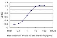 H00002917-M01 - mGluR7 / GRM7