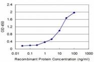 H00003553-M02 - Interleukin-1 beta / IL-1B