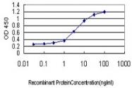 H00003679-M01 - Integrin alpha-7 / ITGA7