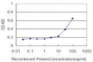 H00003841-M01 - KPNA5 / Importin alpha-6