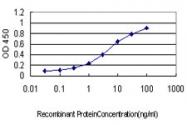 H00003952-M02 - Leptin
