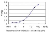 H00004656-M04 - Myogenin