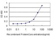 H00005052-M01 - Peroxiredoxin-1 / PRDX1