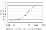 H00005172-M03 - SLC26A4 / Pendrin