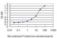 H00005245-M01 - Prohibitin / PHB