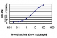 H00005532-M01 - PPP3CB / CALNA2