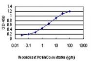 H00005580-M02 - PRKCD