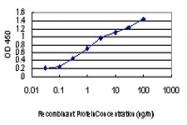 H00005603-M05 - MAP kinase p38 delta / MAPK13