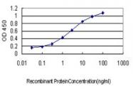 H00005610-M01 - EIF2AK2 / PKR