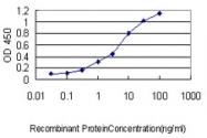 H00005723-M02 - Phosphoserine phosphatase