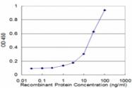 H00005949-M01 - Retinol-binding protein 3 / RBP3