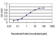 H00006386-M01 - Syntenin-1 / SDCBP