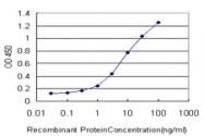 H00006696-M02 - Osteopontin / SPP1