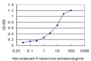 H00006696-M03 - Osteopontin / SPP1