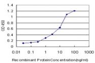 H00006696-M04 - Osteopontin / SPP1