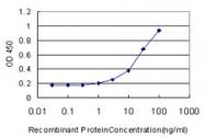 H00006696-M07 - Osteopontin / SPP1