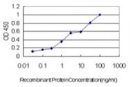 H00006804-M02 - Syntaxin 1A / STX1A