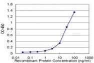 H00006810-M02 - Syntaxin 4 / STX4