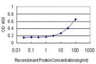 H00006853-M07 - Synapsin-1
