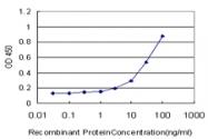 H00006857-M05 - Synaptotagmin-1