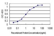 H00006866-M01 - Neurokinin B / TAC3