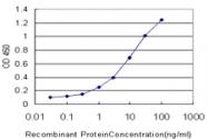 H00006869-M10 - Tachykinin receptor 1 (TACR1)