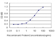 H00007094-M03 - Talin-1 (TLN1)
